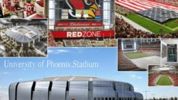 Cannon & Wendt State Farm Stadium